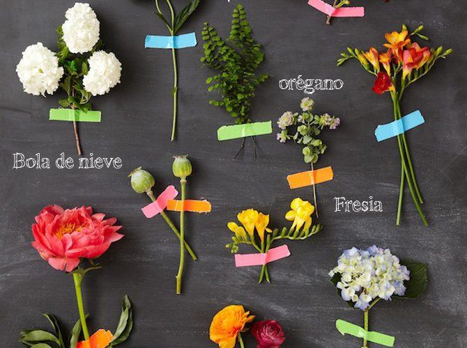 tipos-de-flores